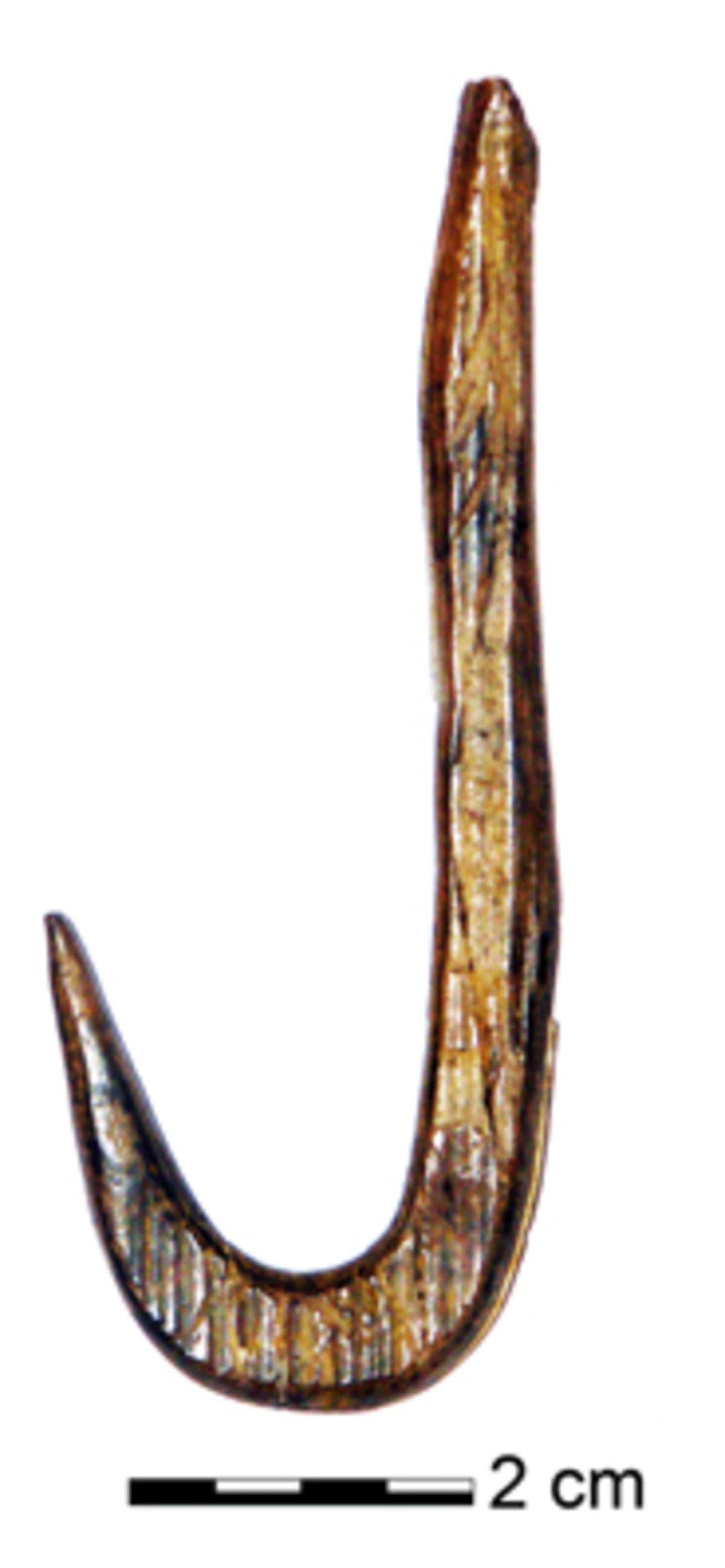 puinen ongenkoukku