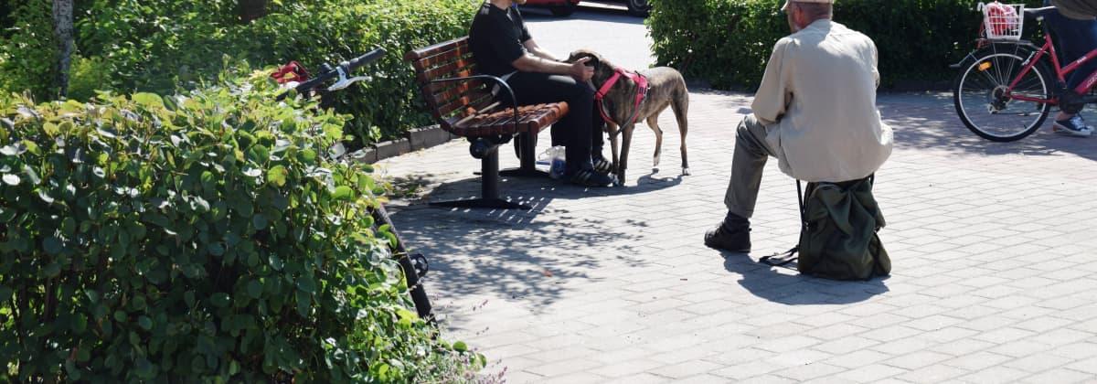 Två män och en hund i en park
