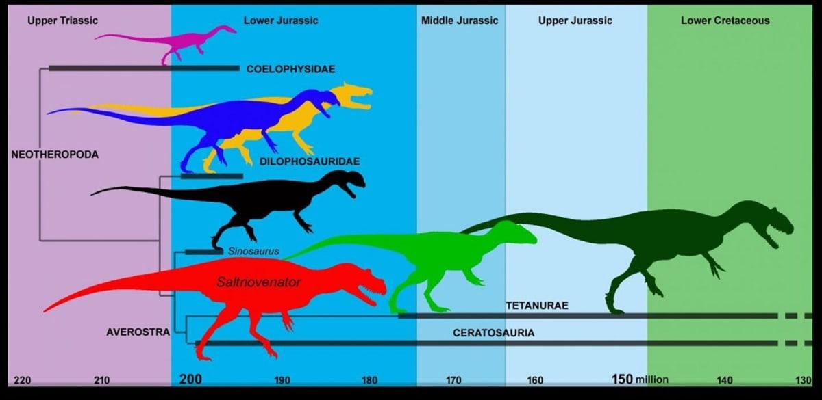 Seitsemän petosaurusta aikajanalla.