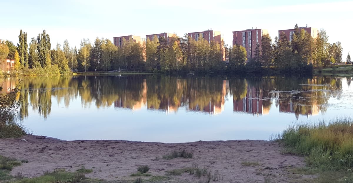 Sammakkolammen uimaranta syksyllä 2019.