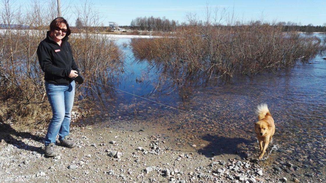 Järvien Vedenkorkeus