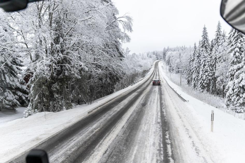Näin liikenneturvallisuus paranee, kun tien pientareelta kaadetaan puut...