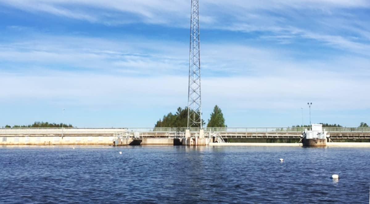 Iijoen Pahkakosken voimalapato yläjuoksulta kuvattuna. Edessä kalatutkimuksessa käytettävien vastaanotinloggereiden kohoja 14.6.2017
