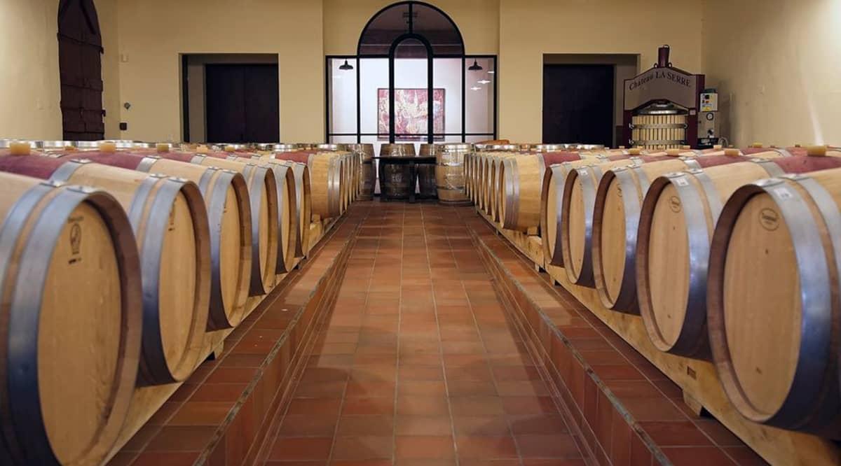 Viinitynnyreitä riveissä huoneessa.