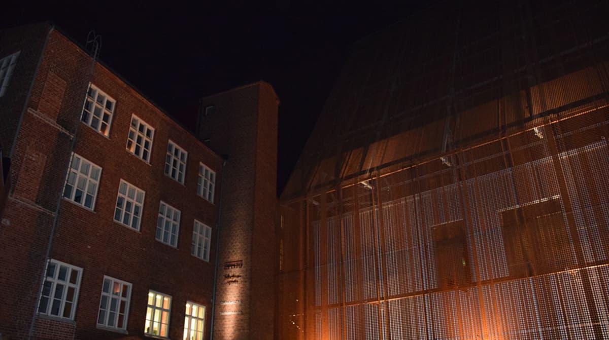 Verkatehtaan ristikkohäkin sisältä naakat hakevat turvapaikkaa yöksi