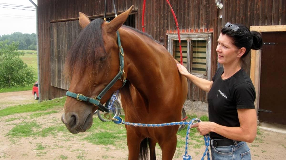 Hevoshieroja Niina Närvä ja Sylvi-hevonen
