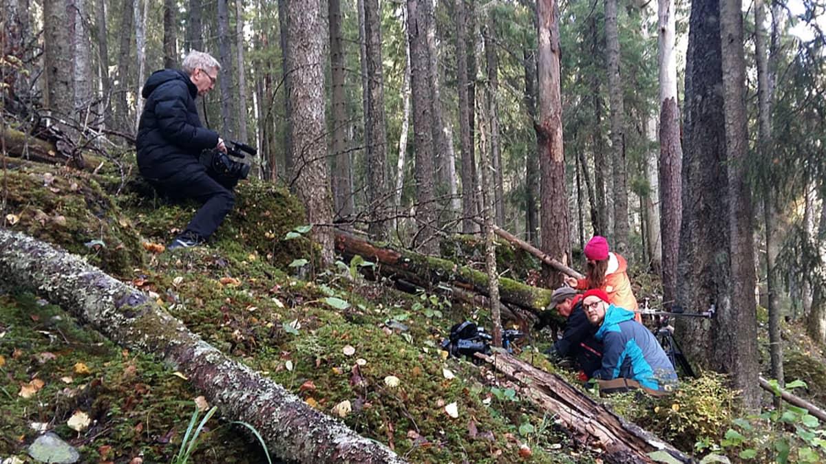Luontotoimittajat töissä.