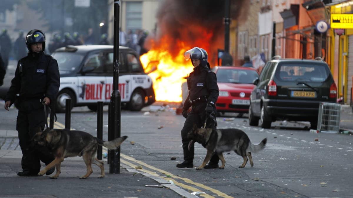 Mellakkapoliisit partioivat poliisikoirineen Hackneyssa Pohjois-Lontoossa maanantaina.