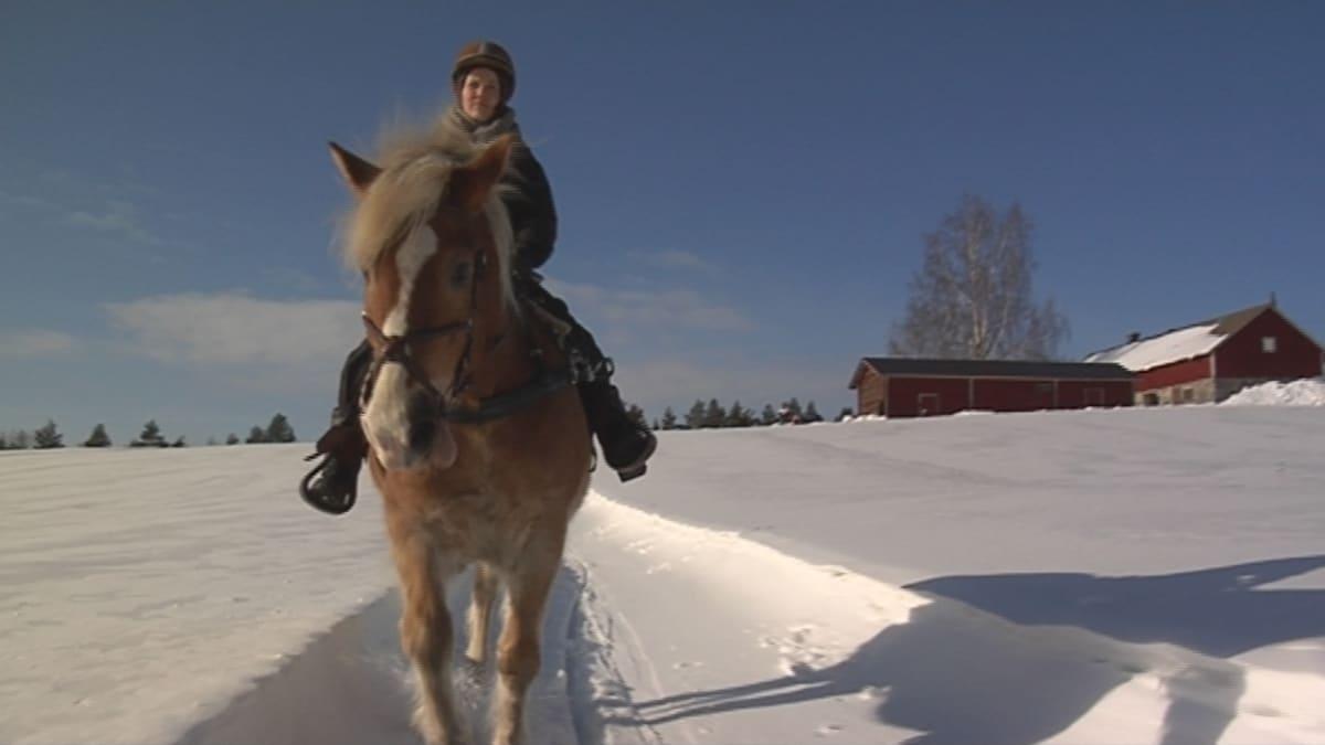 Ratsastaja ja hevonen talvimaisemassa.