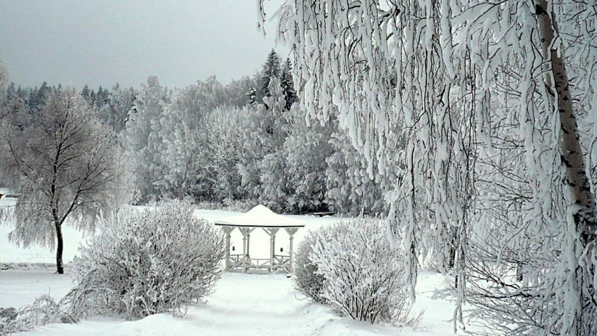 talvimaisema Aulangolta