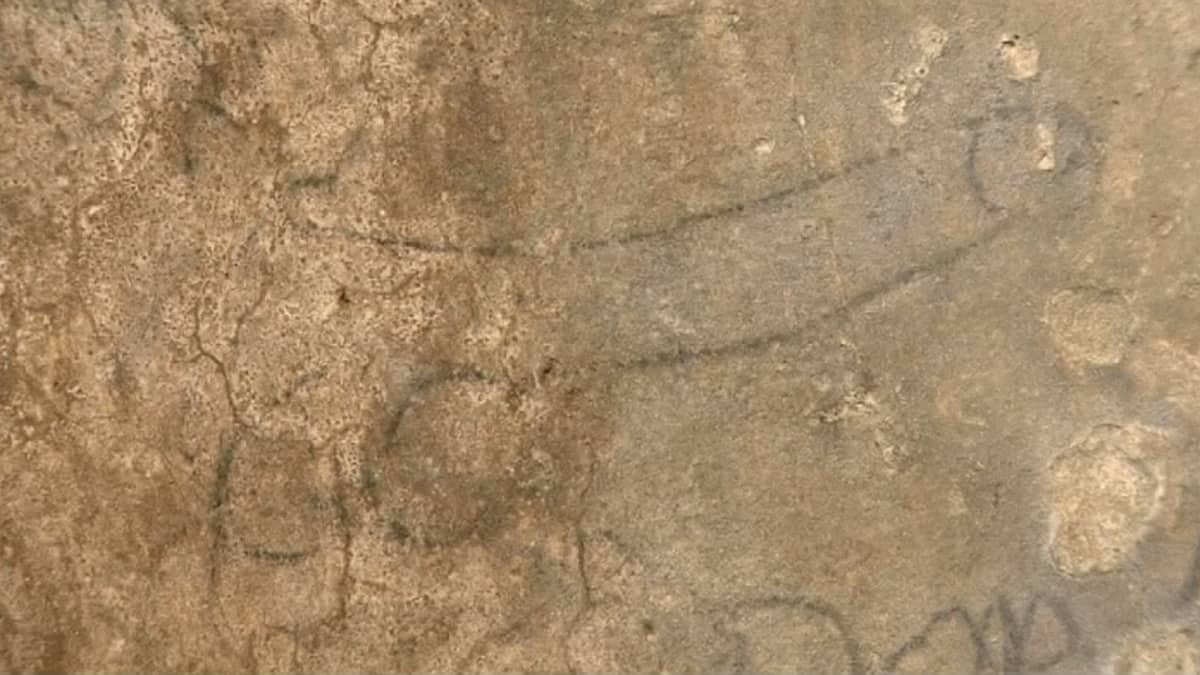 Colosseumin seinälle maalattu peniksen kuva.