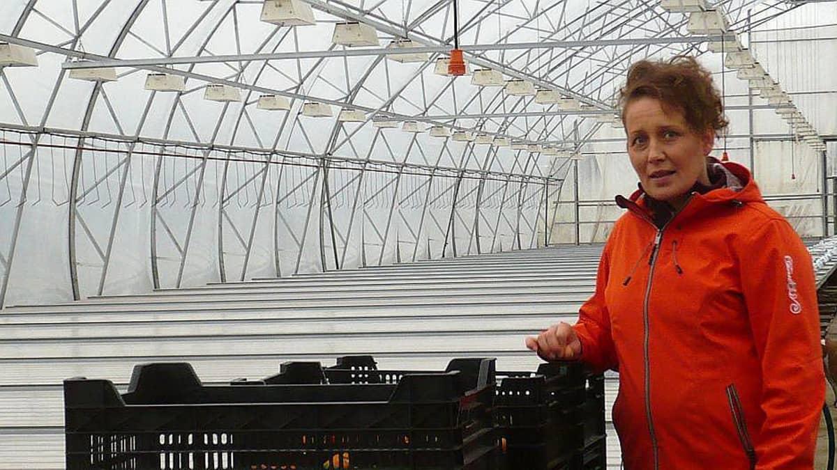 Leppälehdon puutarhan yrittäjä, puutarhuri Minna Nissilä