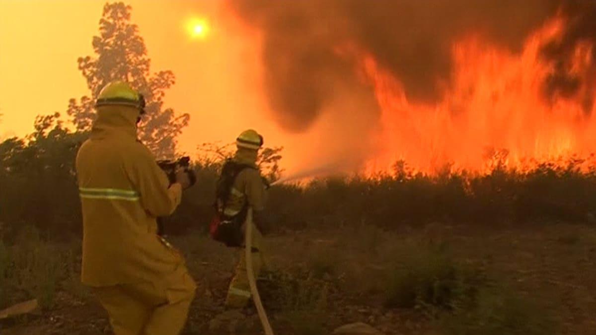 Palomiehet yrittävät sammuttaa maastopaloa.