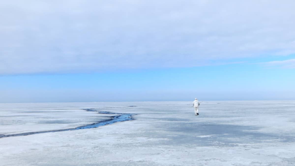Hylkeenpyytäjä jatkaa matkaansa ulommas merelle.