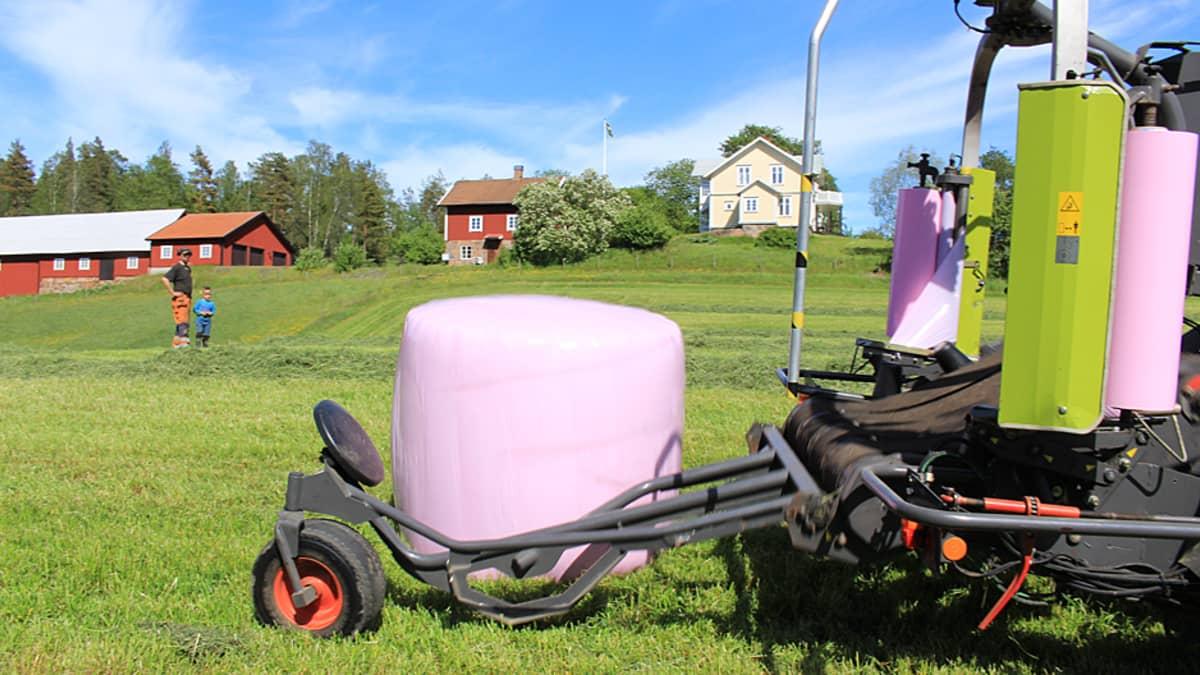 Pinkkejä paaleja pellolla.