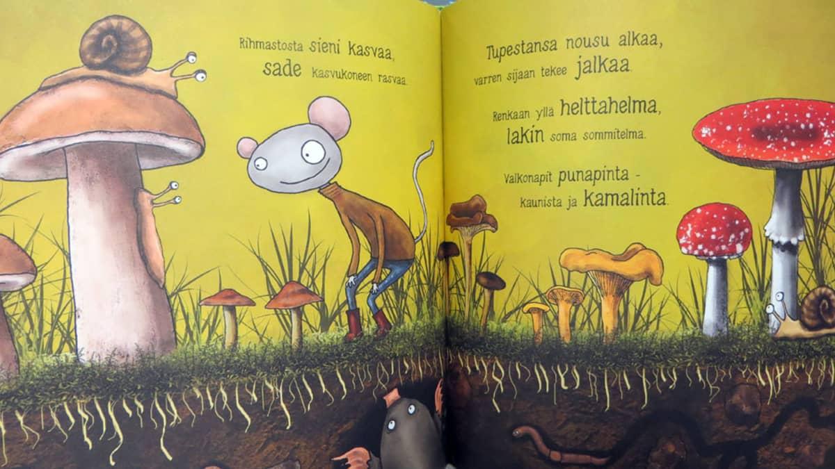 Aukeama Kirjavan kissan tutkimusretki -kirjasta