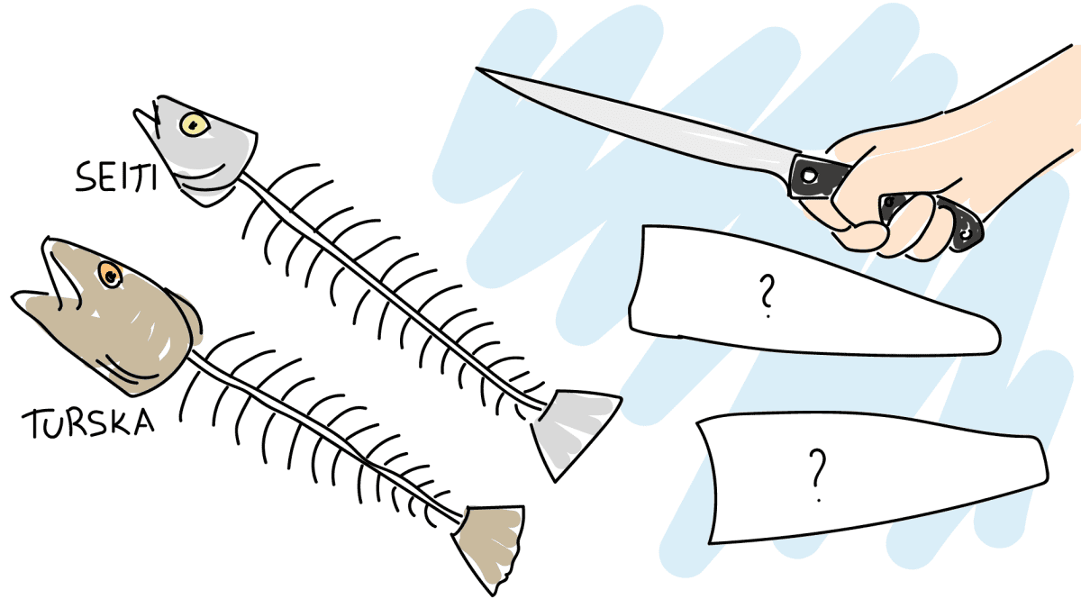 Kala muuttuu fileerauksen jälkeen tunnistamattomaksi -piirros