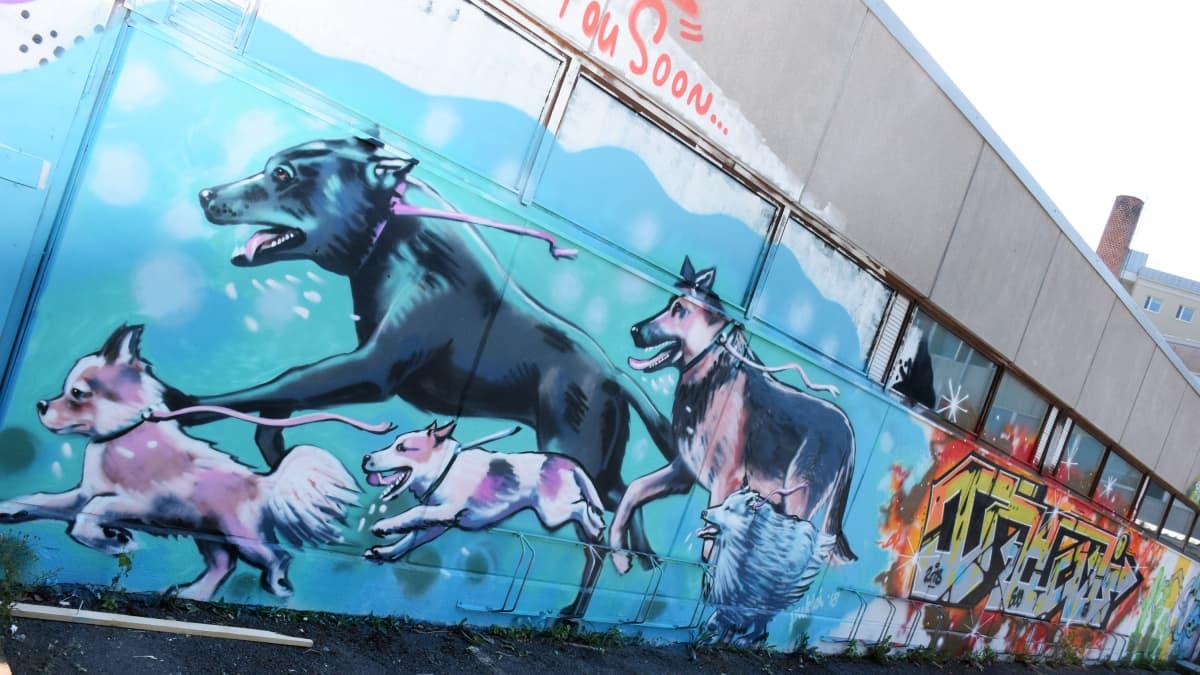 Graffitia Kaurialan koulun ulkoseinässä Hämeenlinnassa.