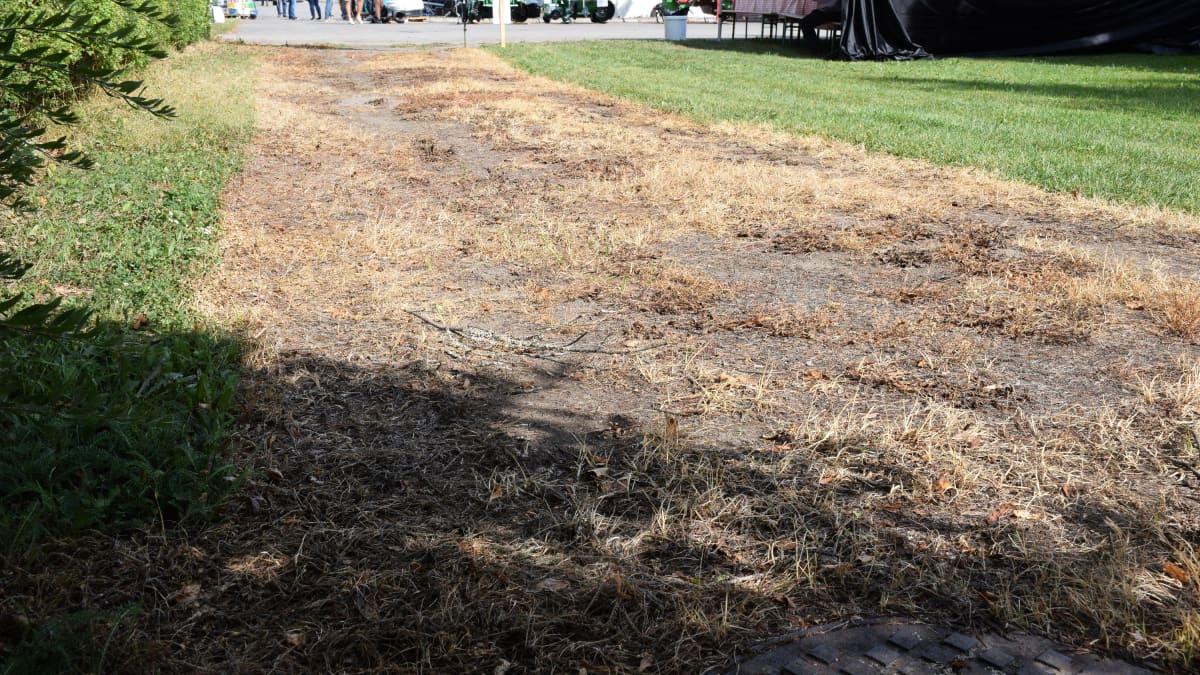 Kuumavesitorjunnan jälkeensä jättämää maastoa.