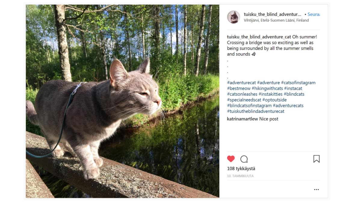 Tuisku Instagram