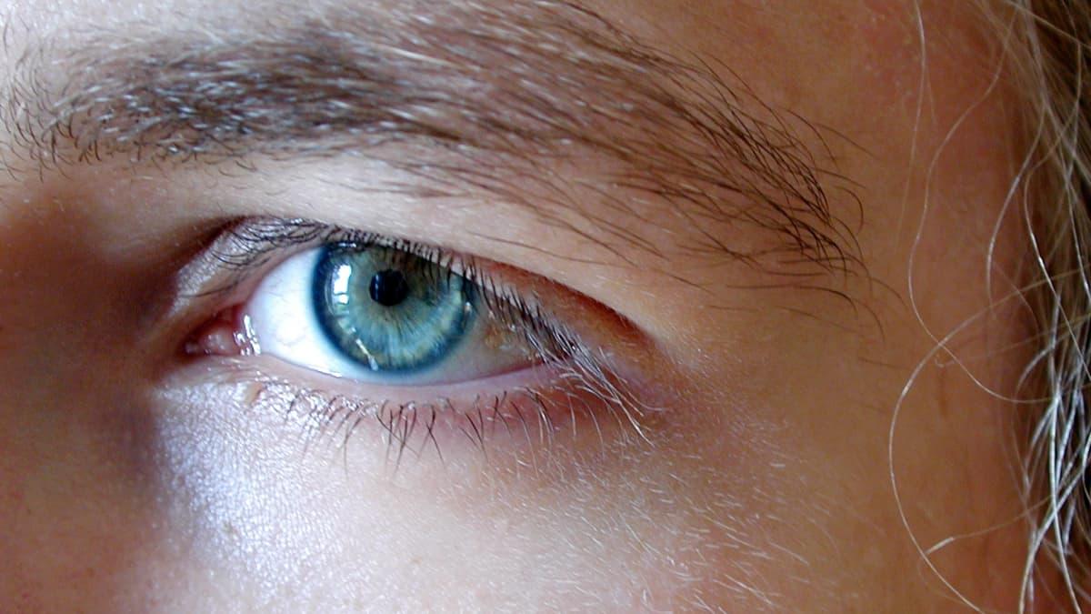 Silmä.