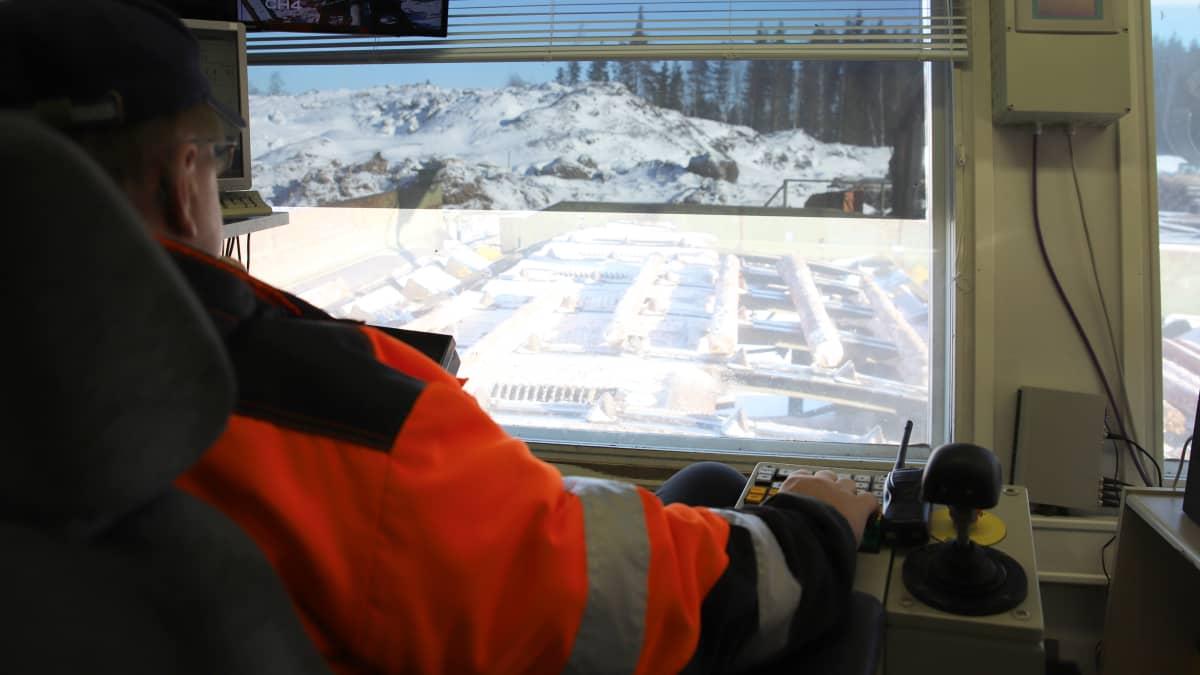 Silmämääräistä tukkien laaduttamista Sahakuution sahalla Savonlinnan Kerimäellä
