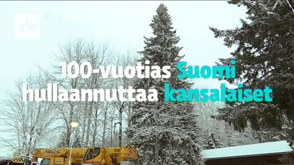 Jättikuusi valaistiin Mikkelissä