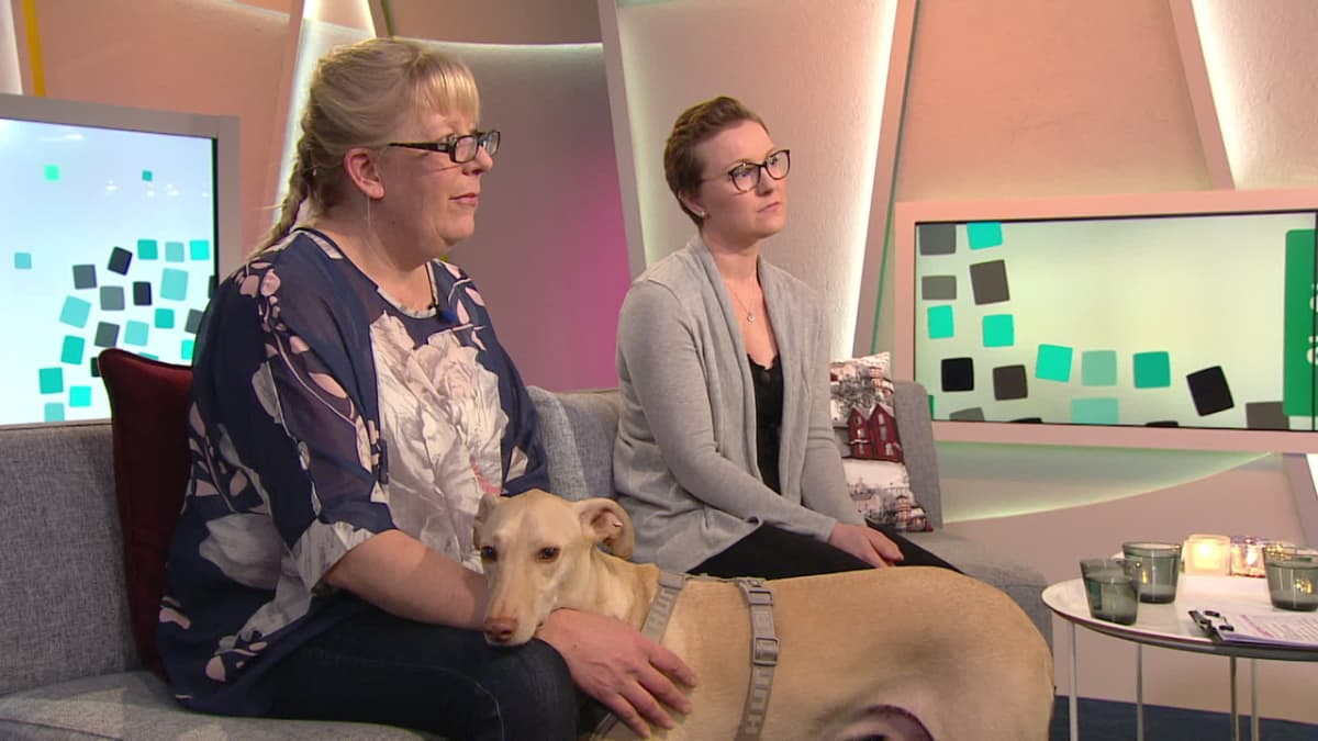 Aamun Akuutti: Koira löytää syövän
