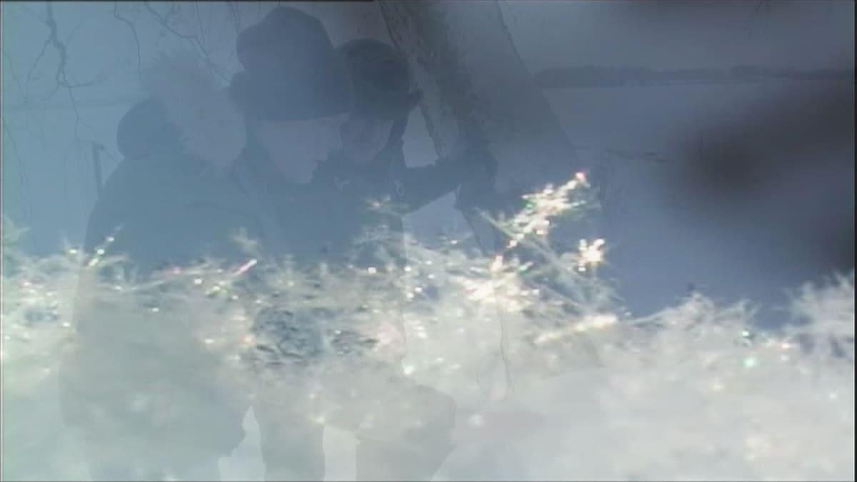 Juha Luonnossa: Lumi