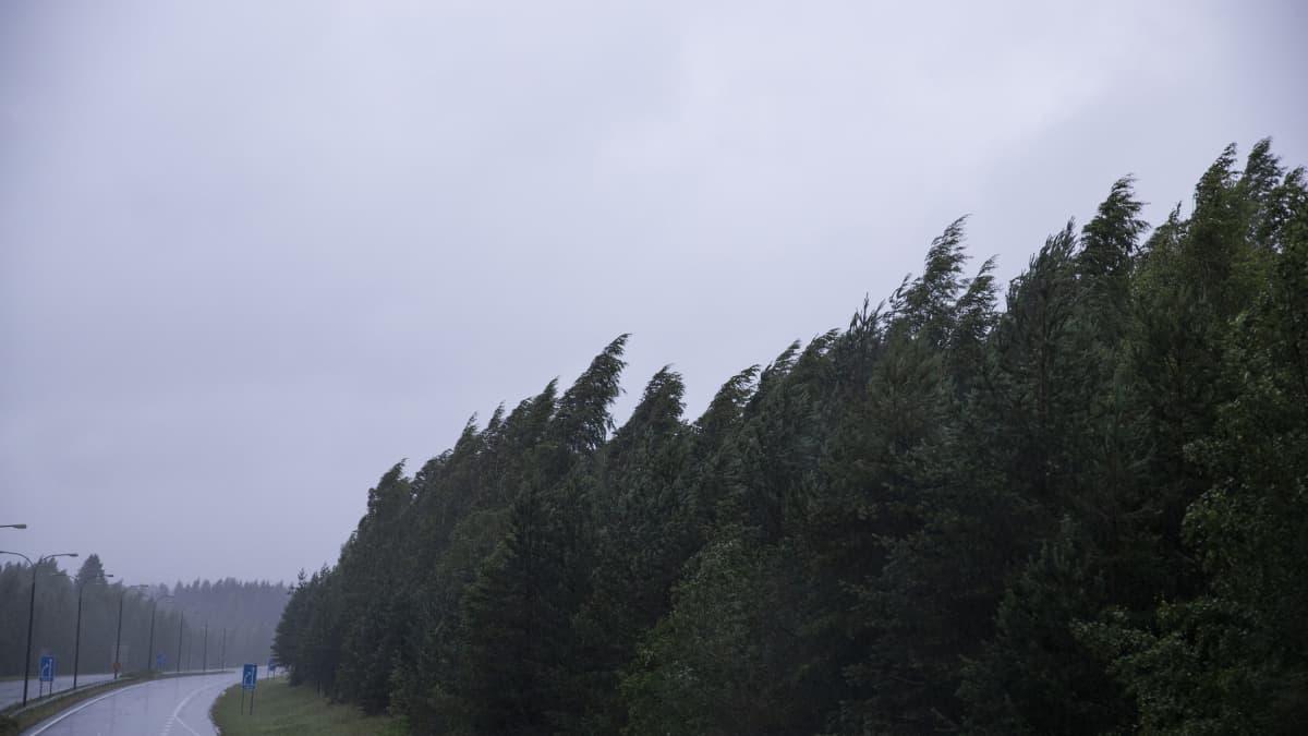 Myrsky runnoi Itä-Suomea