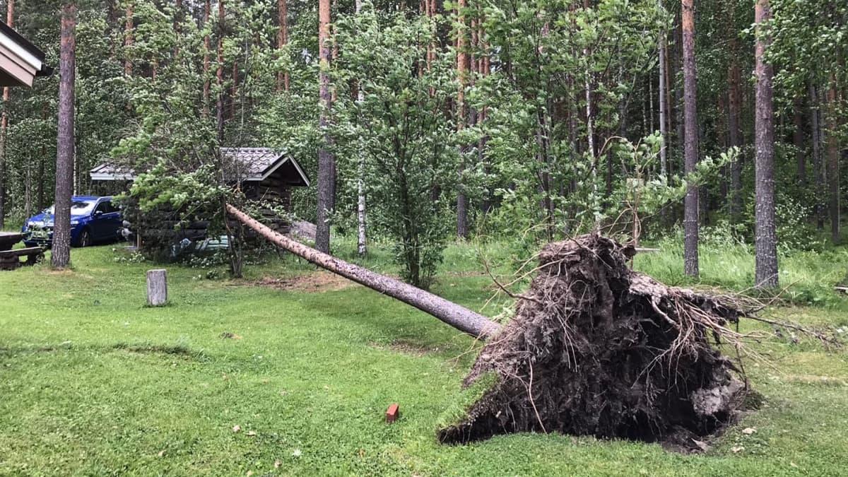 Päivö-myrskyn tuhoja