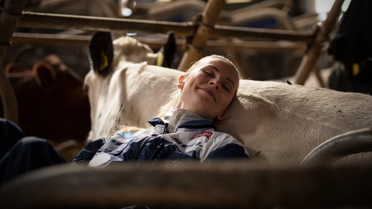 """Navetta on Kristiina Mäkelälle henkireikä: """"Lehmät ovat kuin psykologeja"""""""