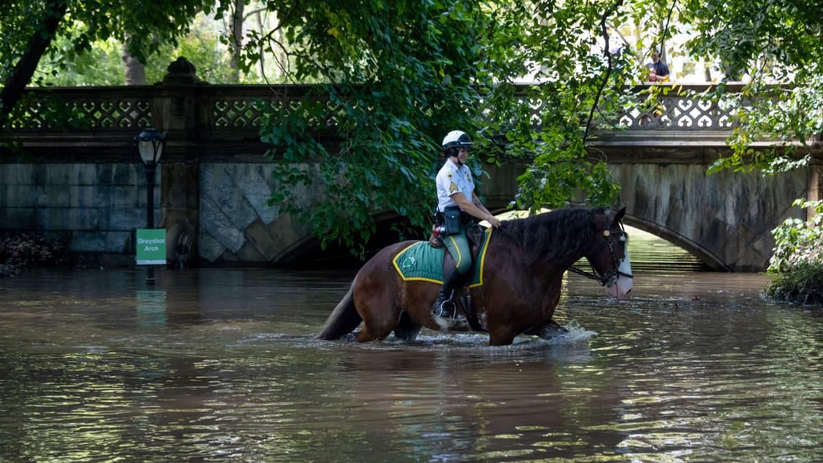 Yhdysvaltain itärannikolla ainakin 44 ihmistä on saanut surmansa rankkasateiden viime päivinä aiheuttamissa tulvissa