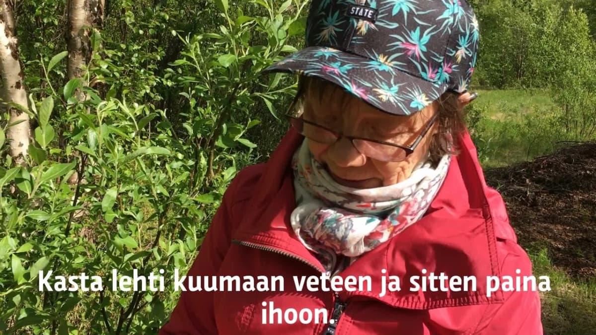 Kirsti Paltto kertoo miten pajunlehteä voi käyttää hyttysenpuremien hoidossa.