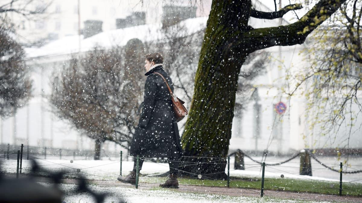 Nainen kävelee räntäsateessa Helsingissä.