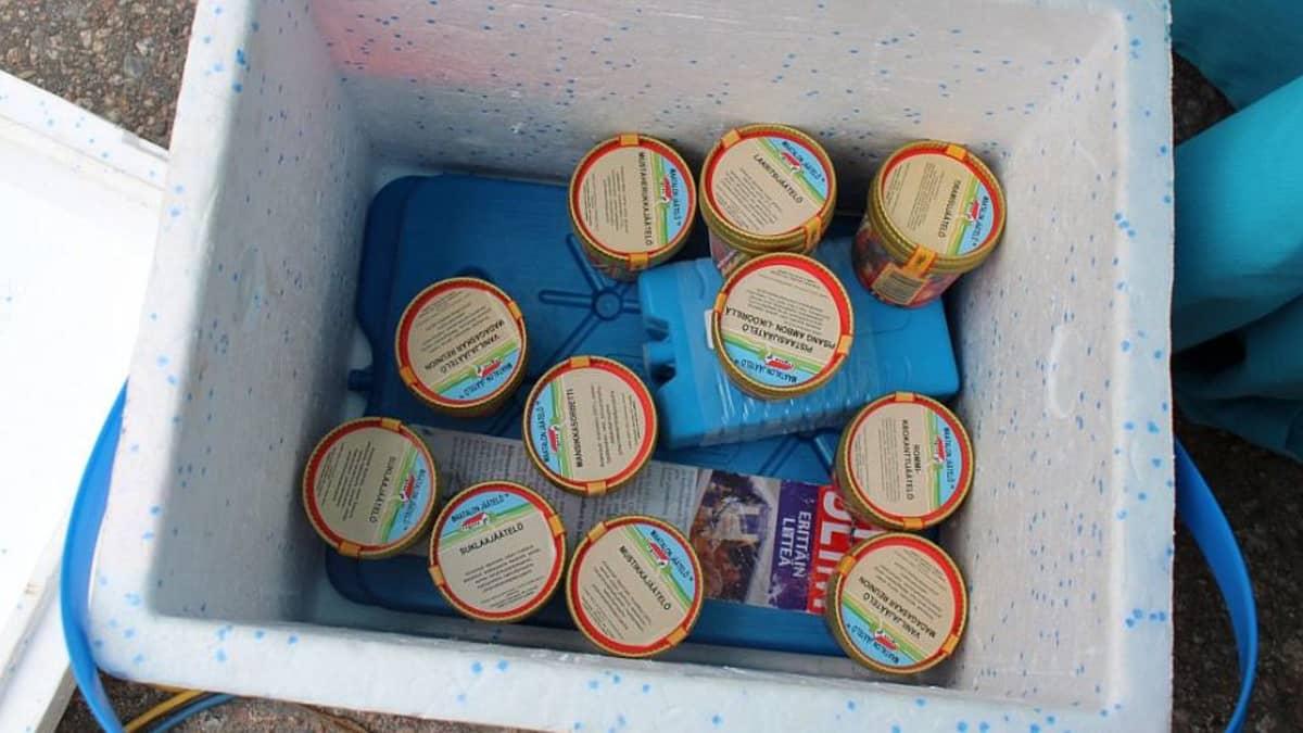 Desilitran jäätelöpikareita kylmälaukussa.