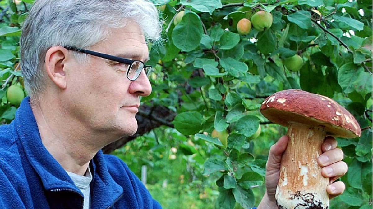 Petri Toiviainen syksyisessä sienimetsässä.