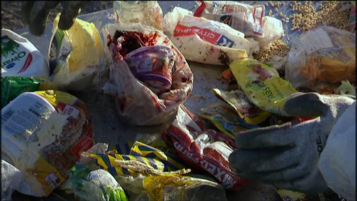 Ruokavalikoimaa kaatopaikalla