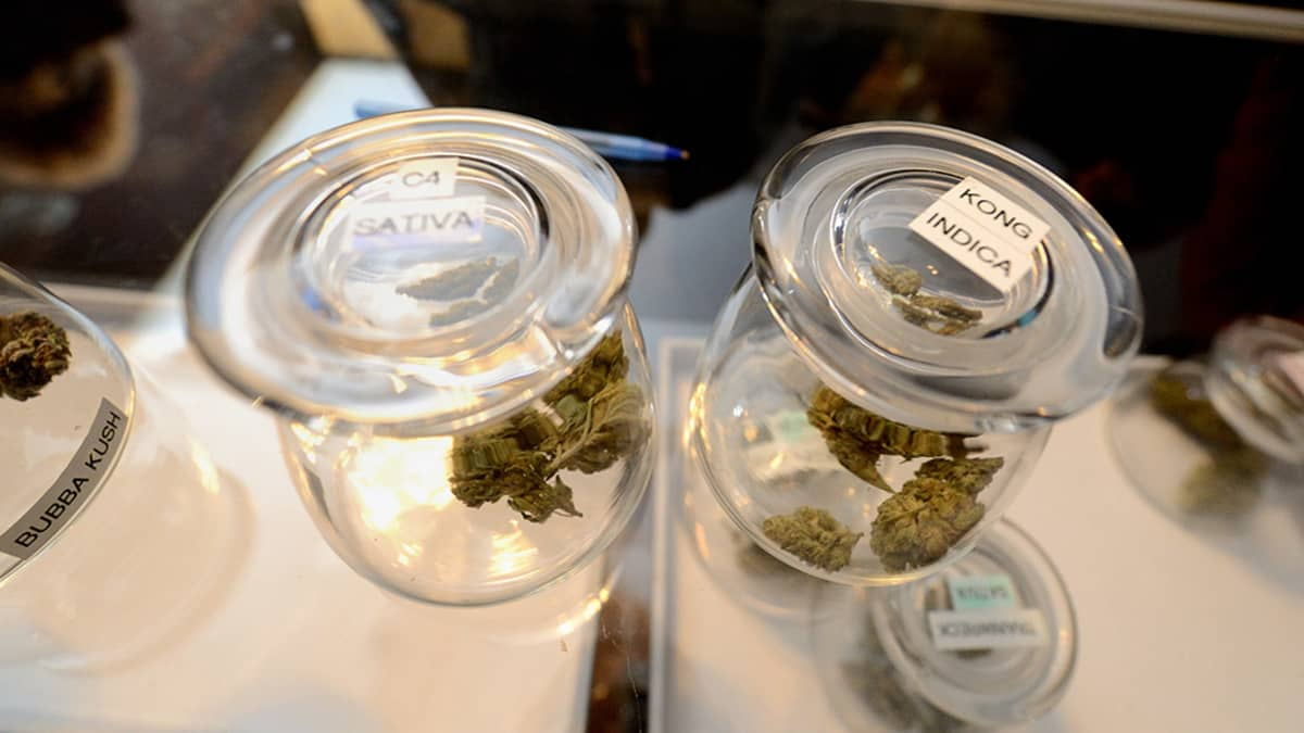 Marihuana myynti.