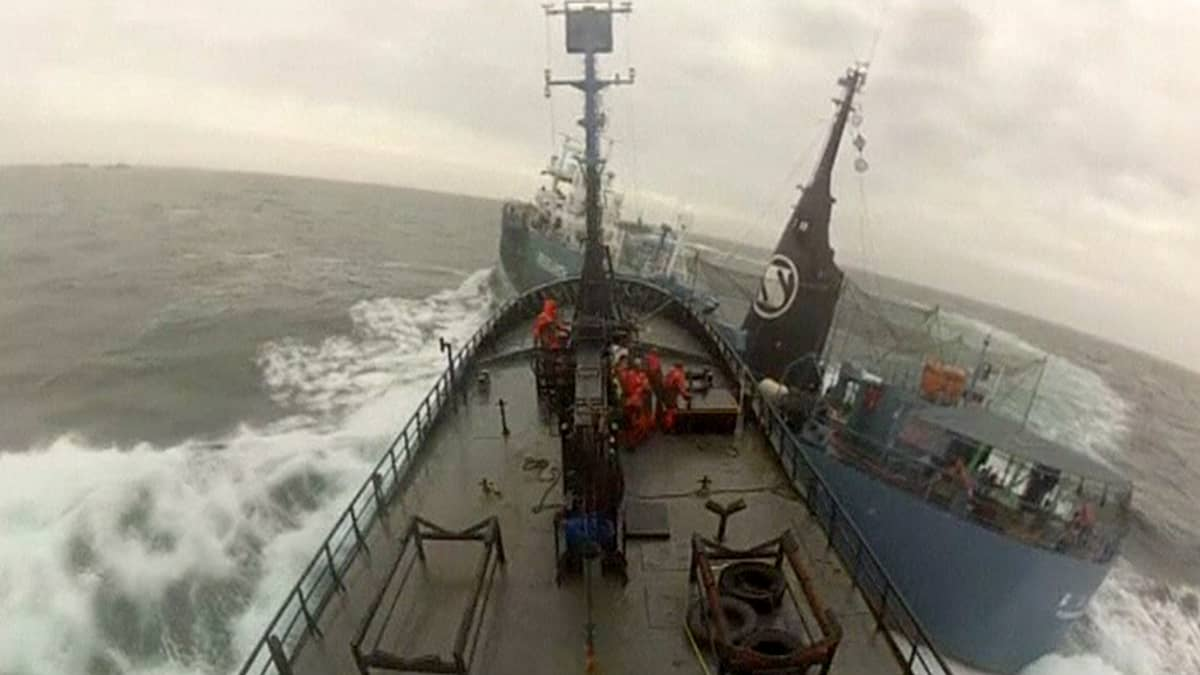 kaksi laivaa törmää toisiinsa