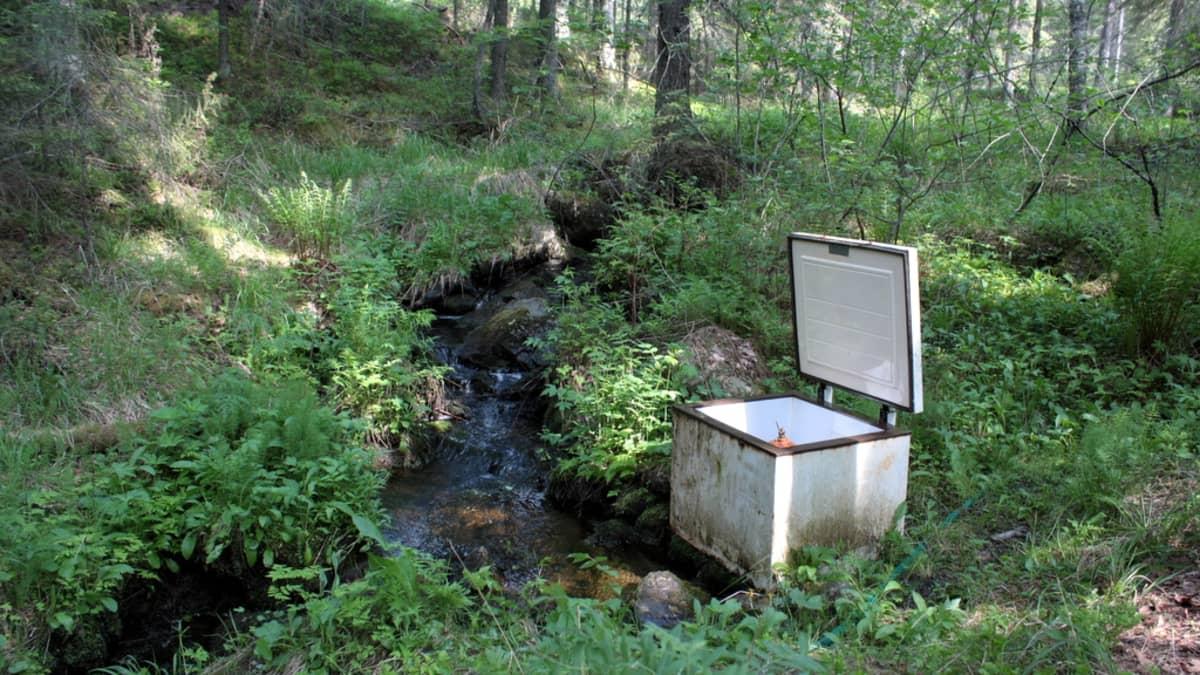 Vesioinas-pumppu metsässä vanhan pakastimen kuoren sisällä