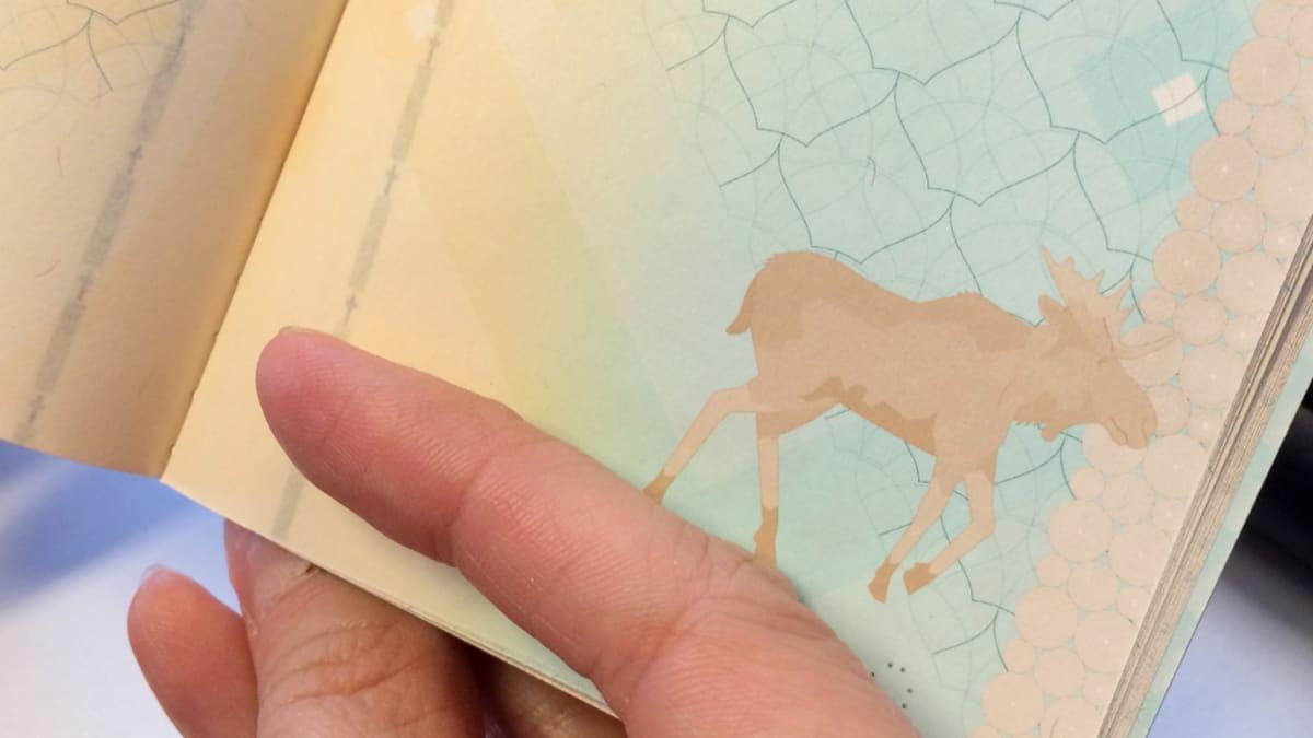 Hirven kuva passissa.