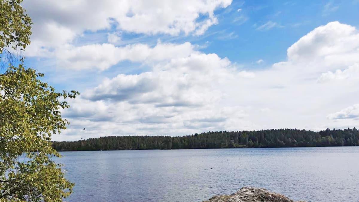 Kukkiajärvi