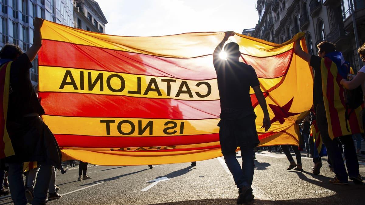 Mielenosoittajia kadulla.