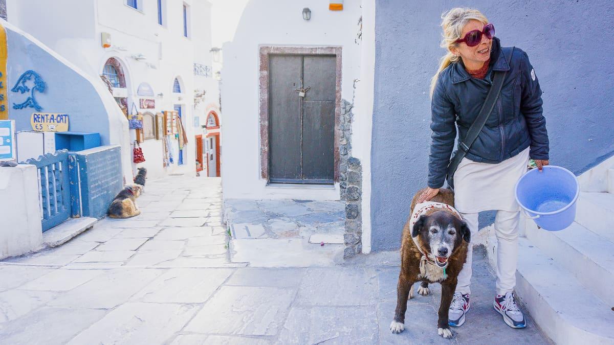 Eläinsuojelija Anna Papanikolaoulla on kulkueläinten myrkytysten varalle laukussaan vastamyrkkyä ja injektioruiskuja.