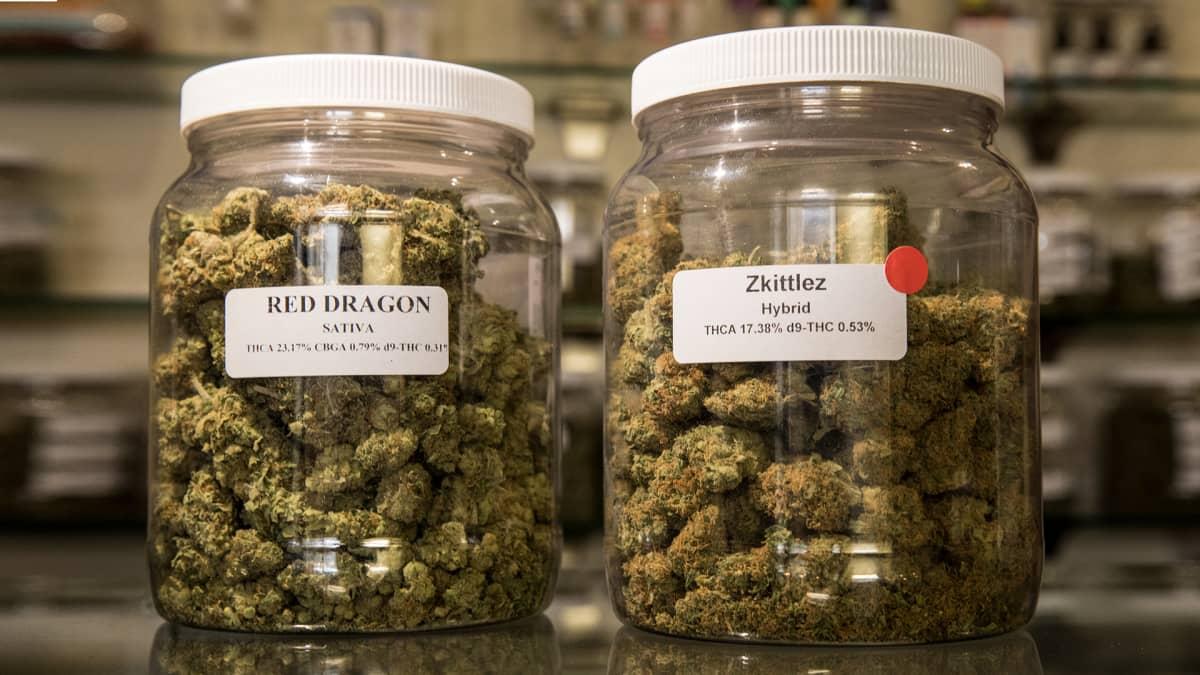 Kannabista lasipurkeissa