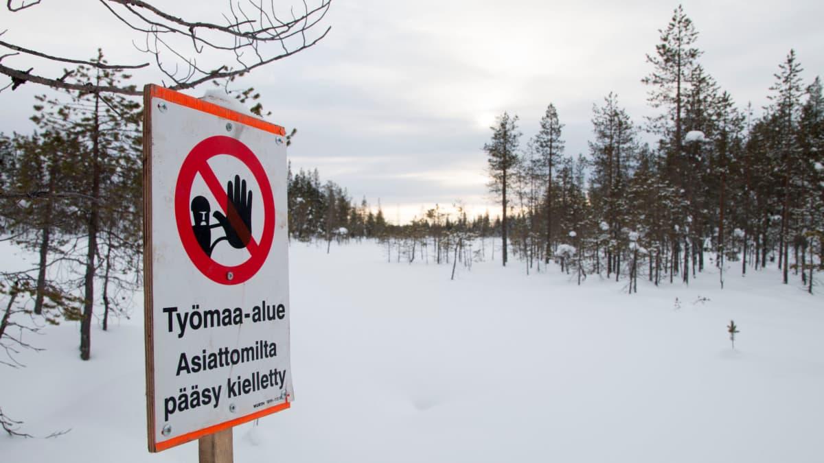 Koeporausalue Sodankylässä.