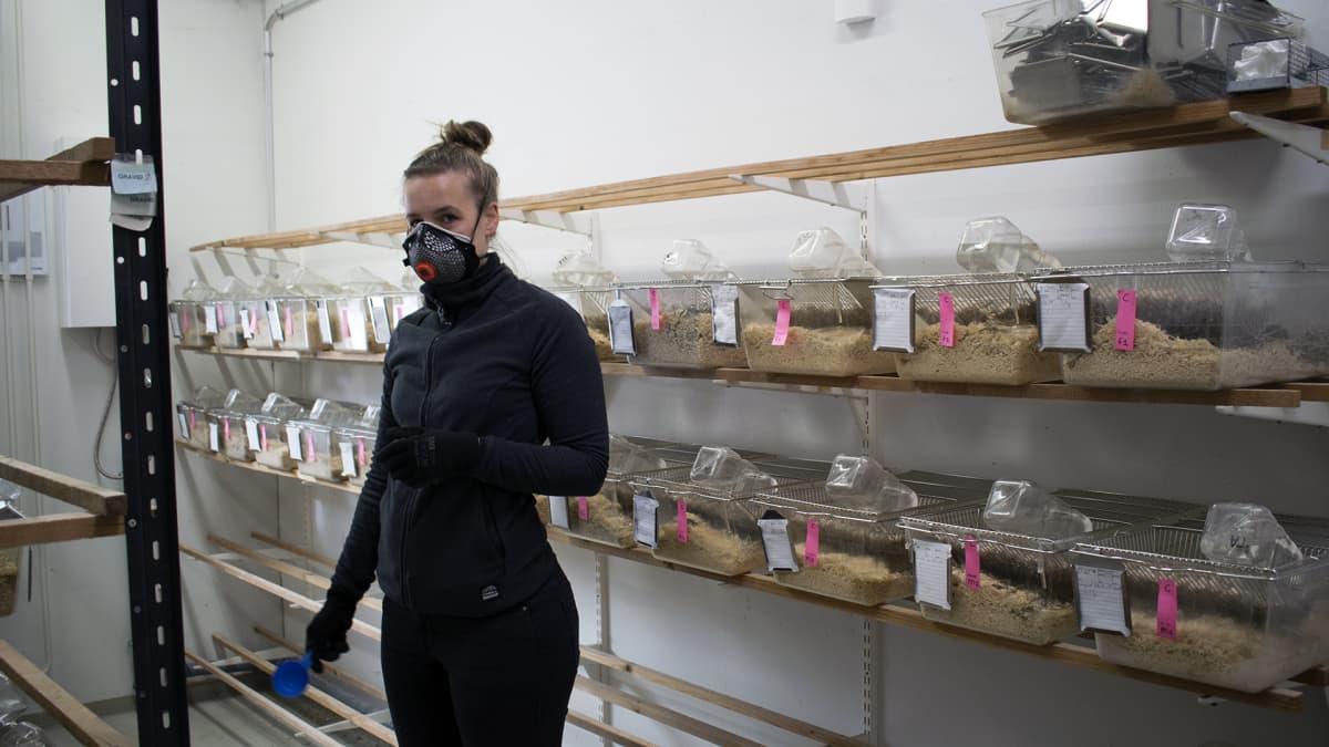 Nuori tutkija koe-eläinlaboratoriossa