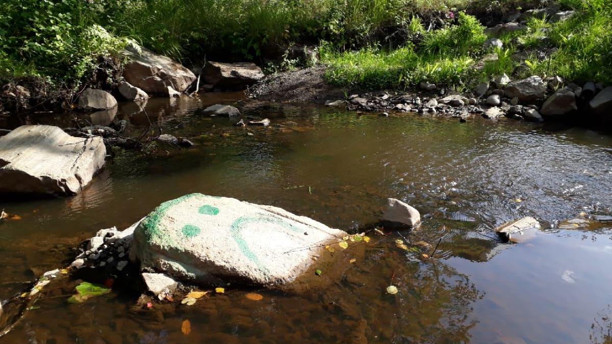 Matalalla olevan Pajuluoman pohjasta paljastuneeseen kiveen on maalattu surullinen hymiö. Kuva 25.8.2018