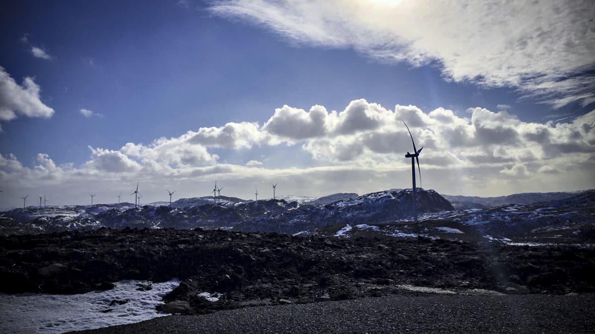 Tuulivoimapuisto tunturialueella.